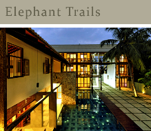 elephant trails-3