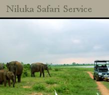 nilukasafari